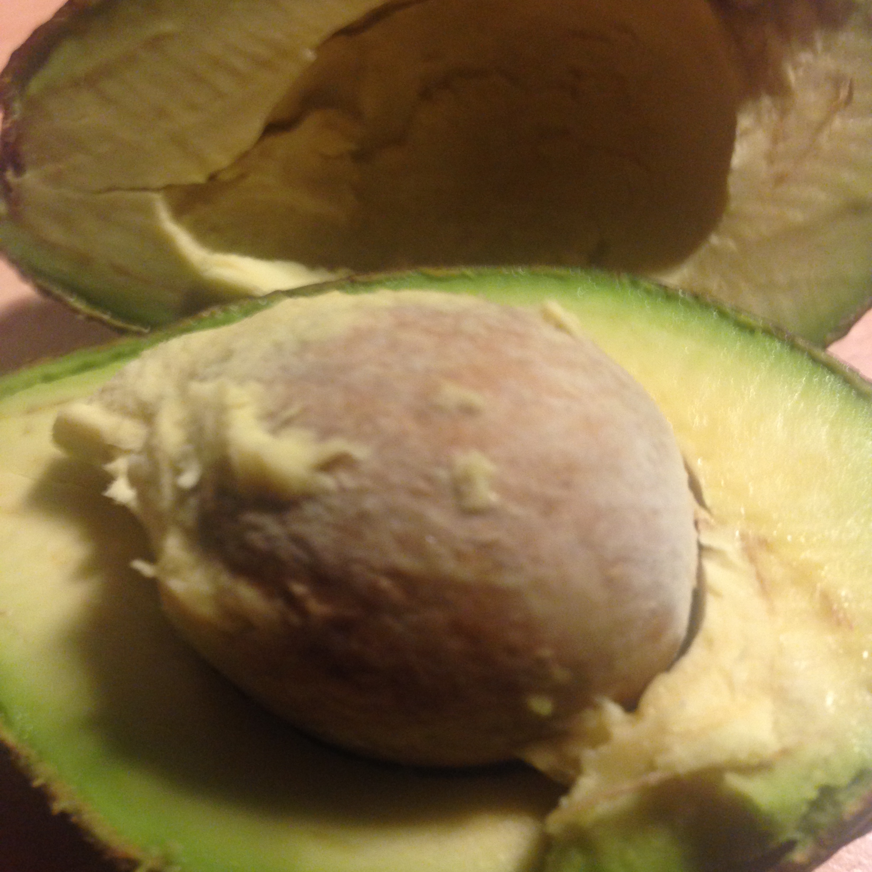 ont i magen av avokado