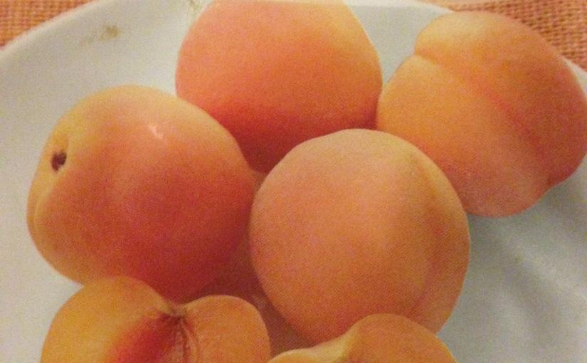 Torkad frukt – är det mer än barasocker?